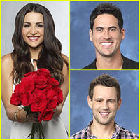 Who Won 'The Bachelorette' 2013? Andi Chooses...